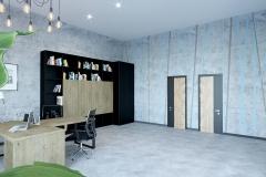 кабинет директора (1)